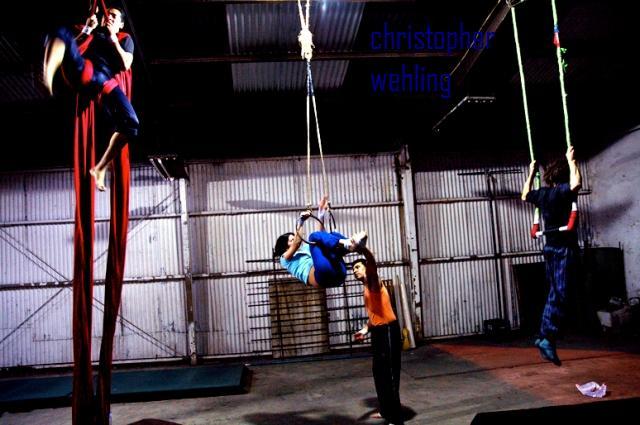 circus_wm